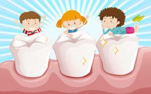 dentição humana